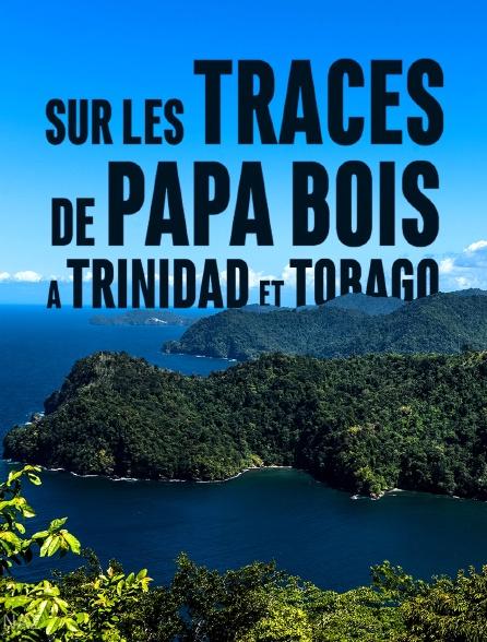 Sur les traces de Papa Bois, à Trinidad et Tobago