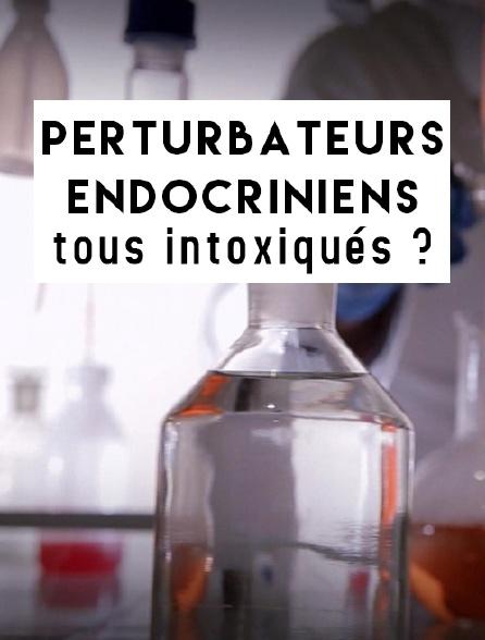 Perturbateurs endocriniens, tous intoxiqués ?