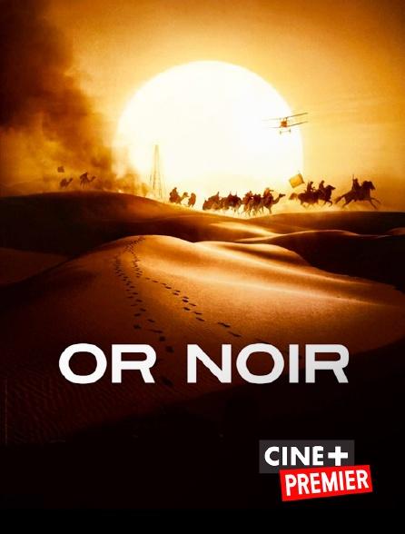 Ciné+ Premier - Or noir