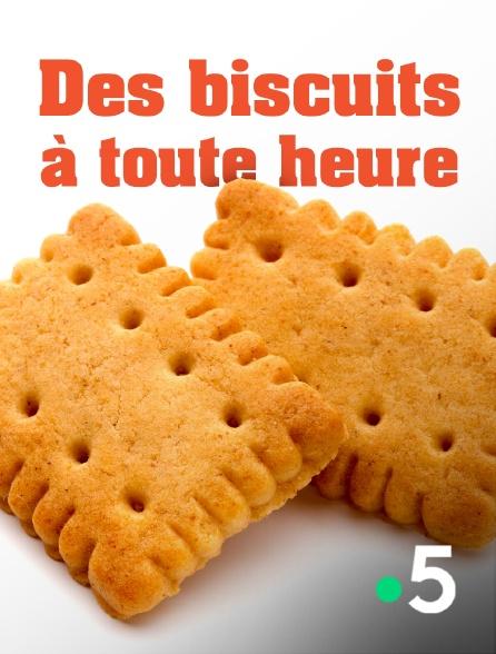 France 5 - Des biscuits à toute heure