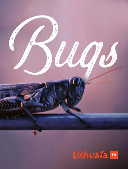 Ushuaïa TV - Bugs