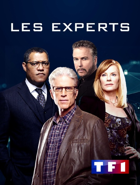 TF1 - Les experts