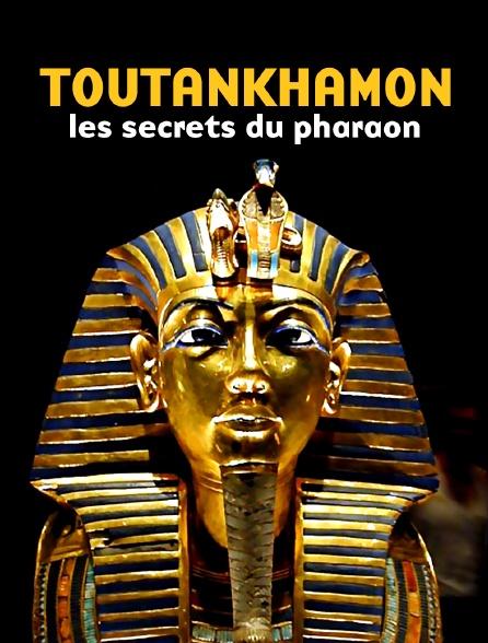 Toutankhamon, les secrets du pharaon