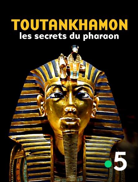 France 5 - Toutankhamon, les secrets du pharaon