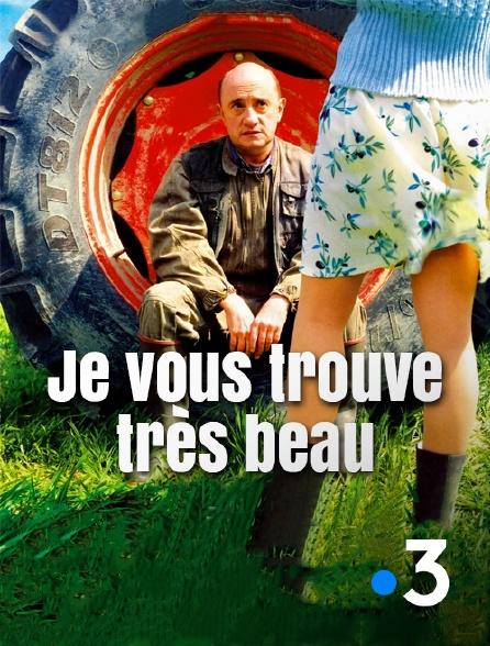 France 3 - Je vous trouve très beau