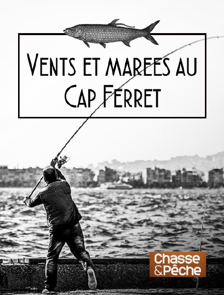 Chasse et pêche - Vents et marées au Cap Ferret