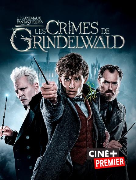 Ciné+ Premier - Les animaux fantastiques : les crimes de Grindelwald