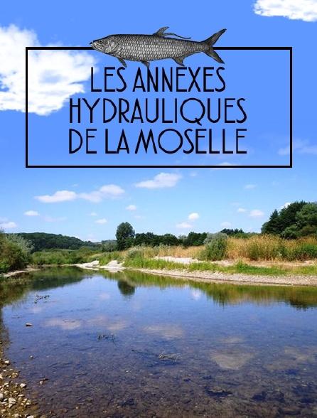 Les annexes hydrauliques de la Moselle