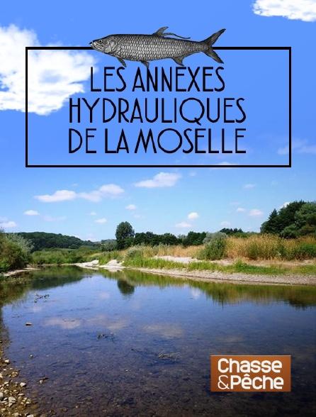 Chasse et pêche - Les annexes hydrauliques de la Moselle