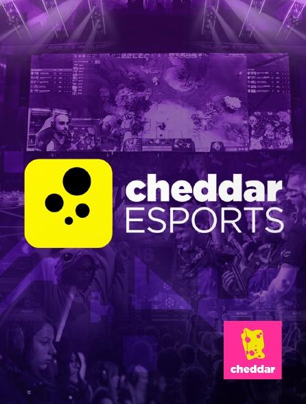 Cheddar - Cheddar Esports