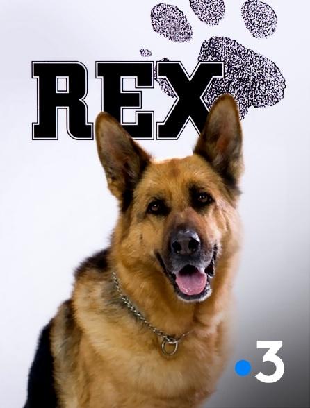 France 3 - Rex