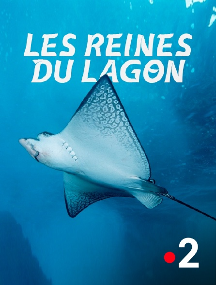 France 2 - Les reines du lagon