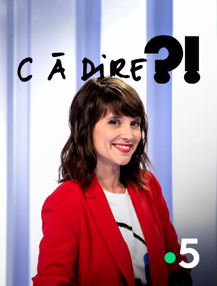 France 5 - C à dire ?!