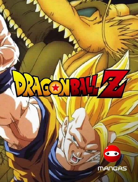 Mangas - Dragon Ball Z : L'attaque du dragon