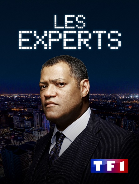 TF1 - Les experts