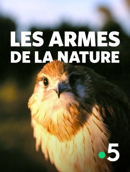 France 5 - Les armes de la nature
