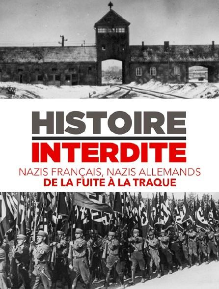 histoire interdite nazis français nazis allemands de la fuite à la traque