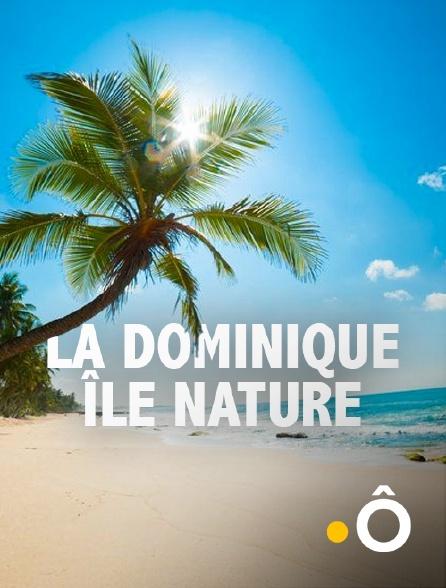 France Ô - La Dominique, île nature