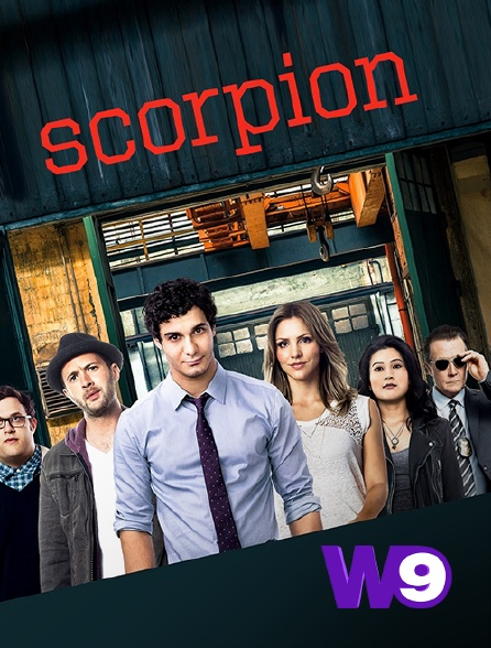 W9 - Scorpion