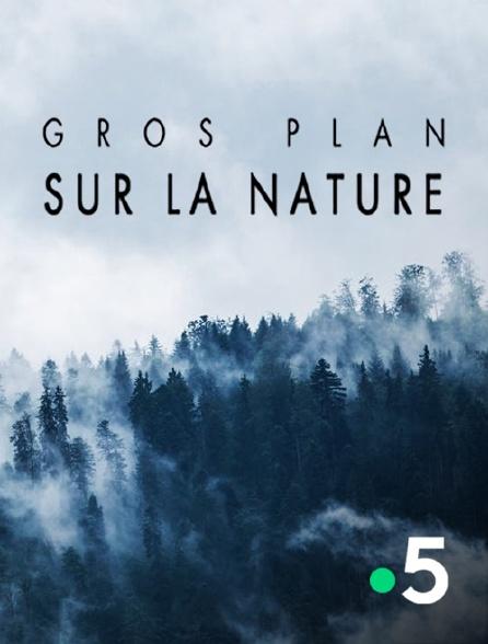 France 5 - Gros plan sur la nature