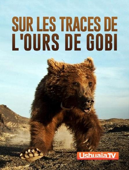Ushuaïa TV - Sur les traces de l'ours de Gobi