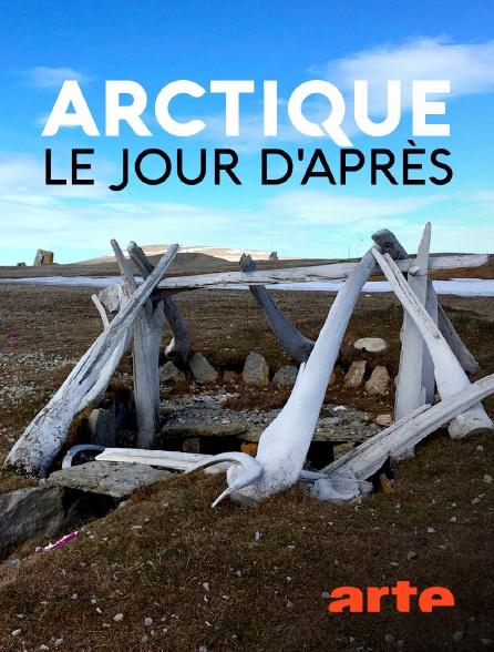 Arte - Arctique - Le jour d'après