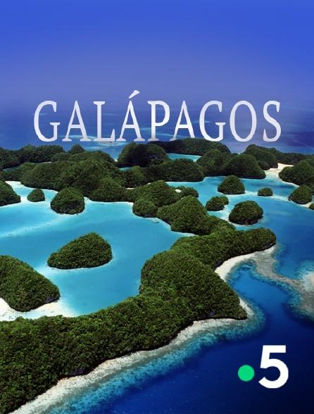 France 5 - Galápagos