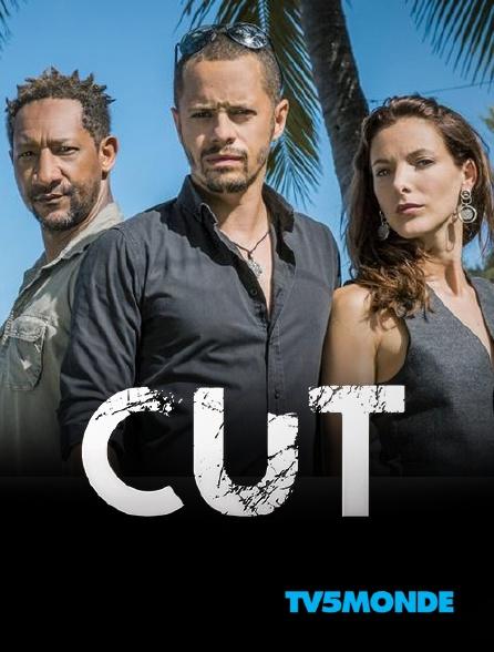 TV5MONDE - Cut