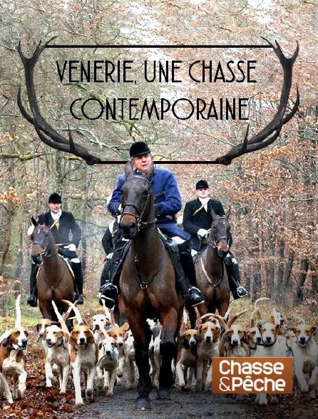 Chasse et pêche - Vénerie, une chasse contemporaine