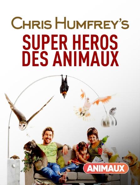 Animaux - Chris Humfrey, super héros des animaux
