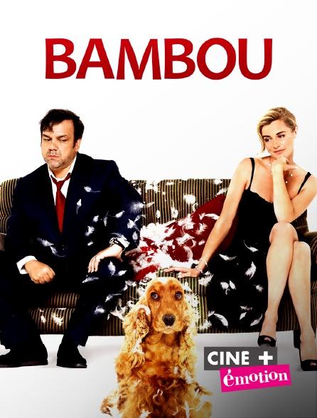 Ciné+ Emotion - Bambou