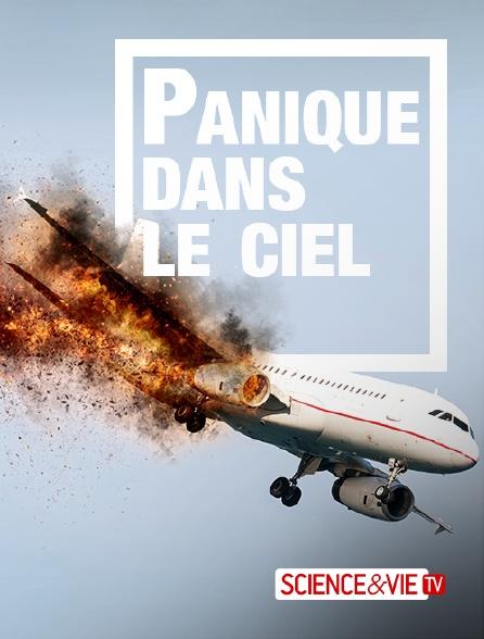 Science et Vie TV - Panique dans le ciel : ces avions qui font le buzz