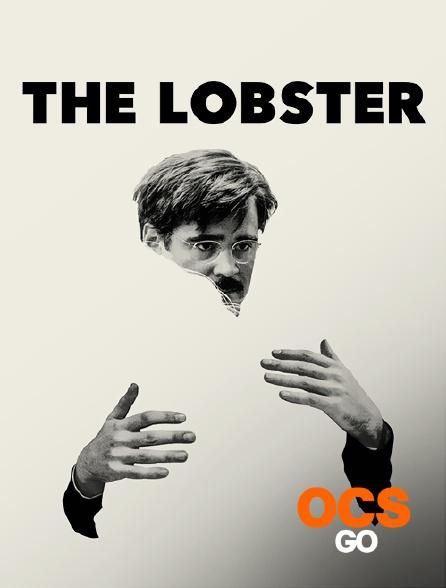 OCS Go - The Lobster