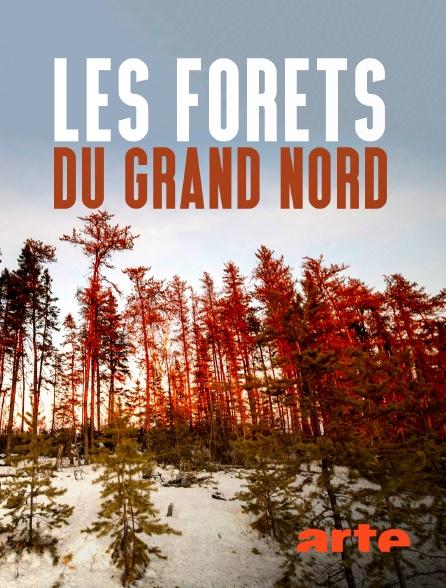 Arte - Les forêts du Grand Nord