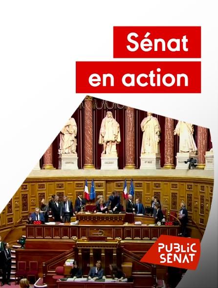 Public Sénat - Sénat en action