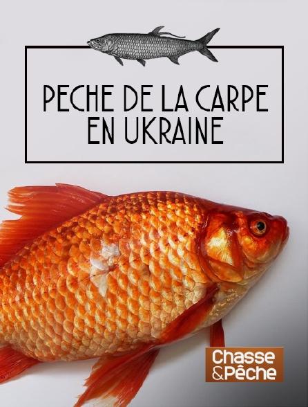 Chasse et pêche - Pêche de la carpe en Ukraine