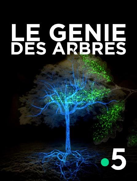 France 5 - Le génie des arbres
