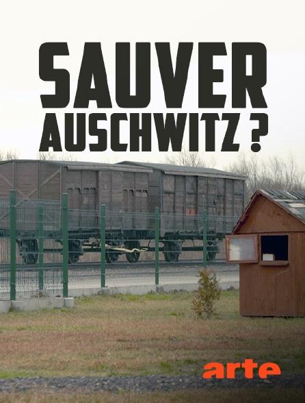 Arte - Sauver Auschwitz ?