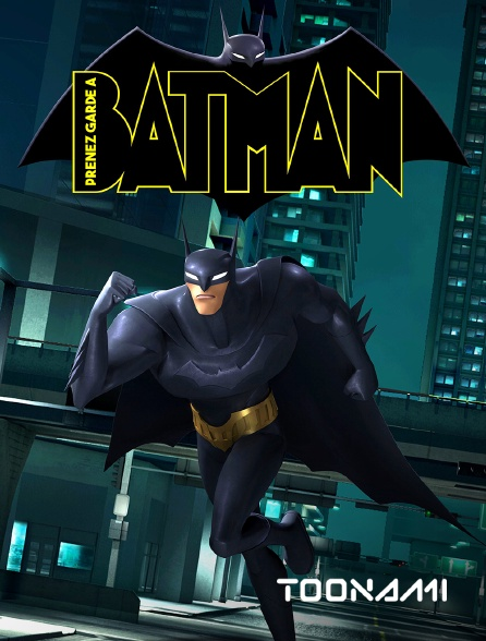 Toonami - Prenez garde à Batman !
