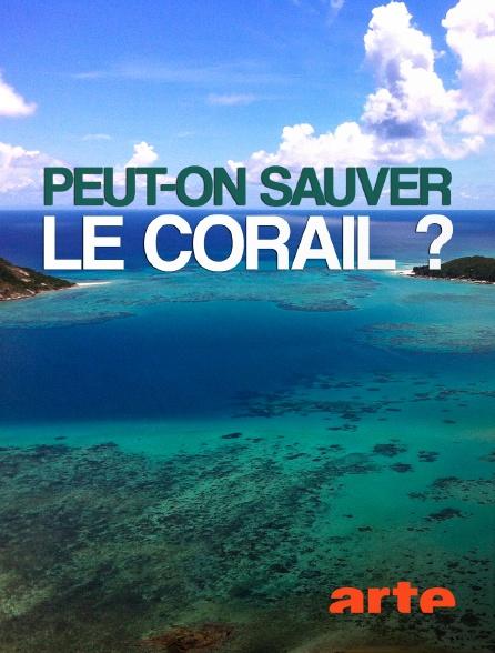 Arte - Peut-on sauver le corail ?