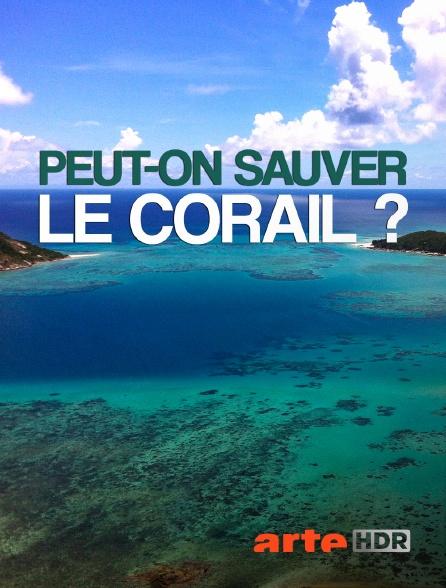 Arte HDR - Peut-on sauver le corail ?