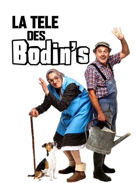 La télé des Bodin's