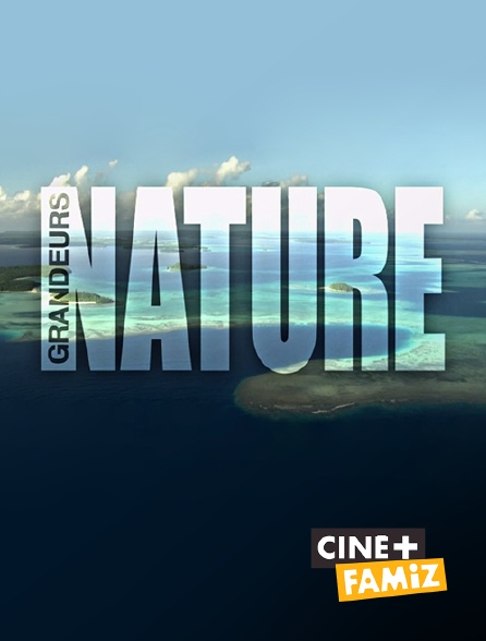 Ciné+ Famiz - Grandeurs nature
