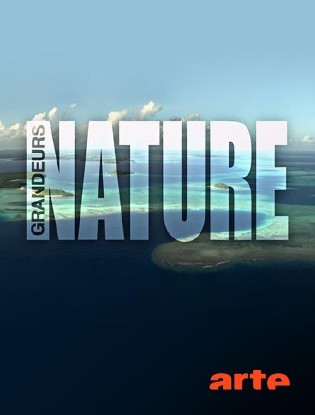 Arte - Grandeurs nature