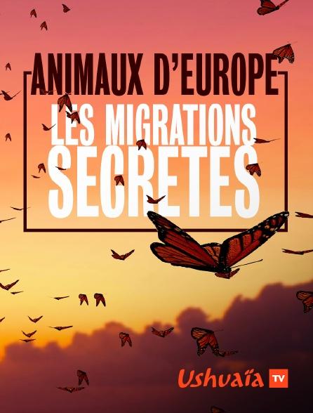 Ushuaïa TV - Animaux d'Europe, les migrations secrètes