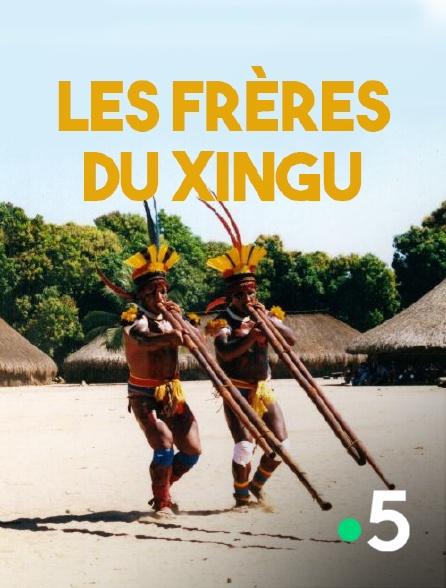 France 5 - Les frères du Xingu
