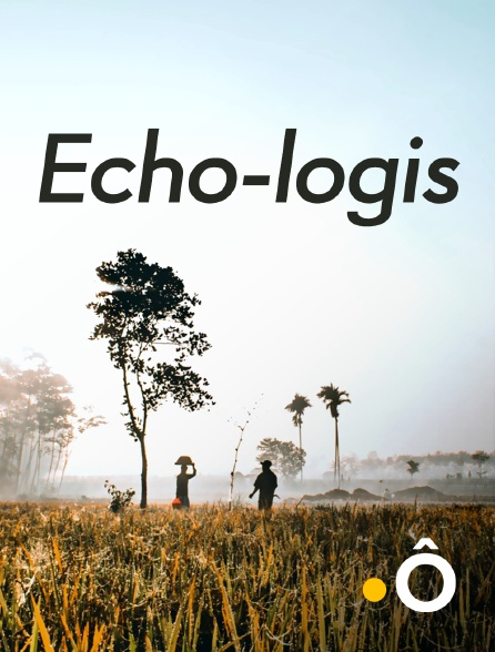France Ô - Echo-logis