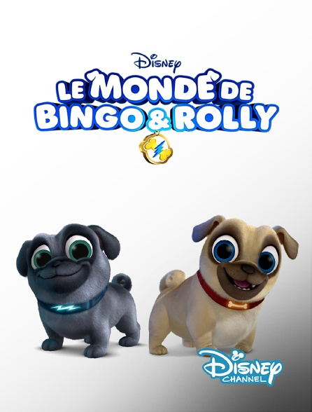 Disney Channel - Le monde de Bingo et Rolly
