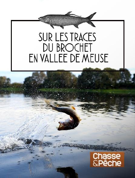 Chasse et pêche - Sur les traces du brochet en vallée de Meuse