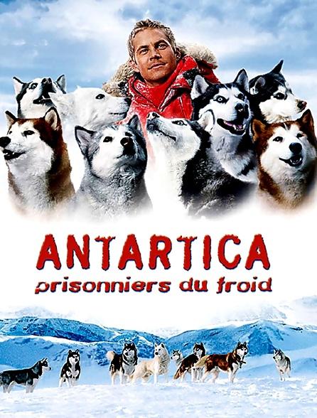 ANTARTICA PRISONNIERS FROID TÉLÉCHARGER FILM DU